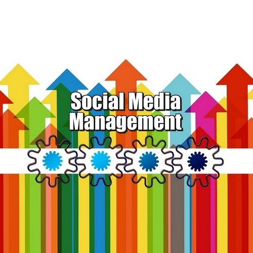 Graphic for the article Social Media Management - Who are the BIG Players In Social Media Management?