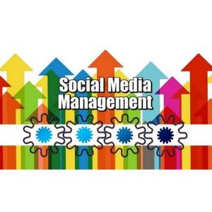 Social Media Management - Who Are The Big Players