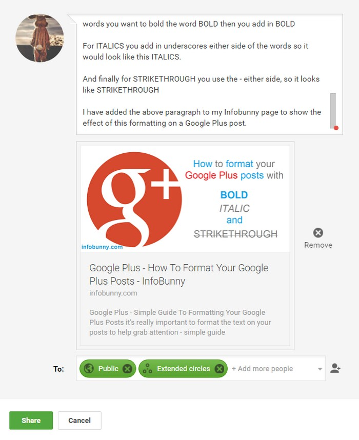 google-plus-text-format