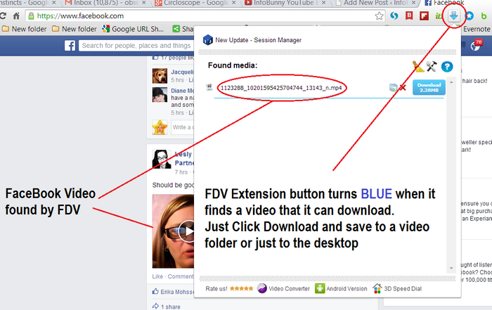 FDV Video Download - Image Showing Found Video - YouTube Blogging Strategy