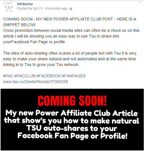 FACEBOOK FAN PAGE POWER AFFILIAITE CLUB POST