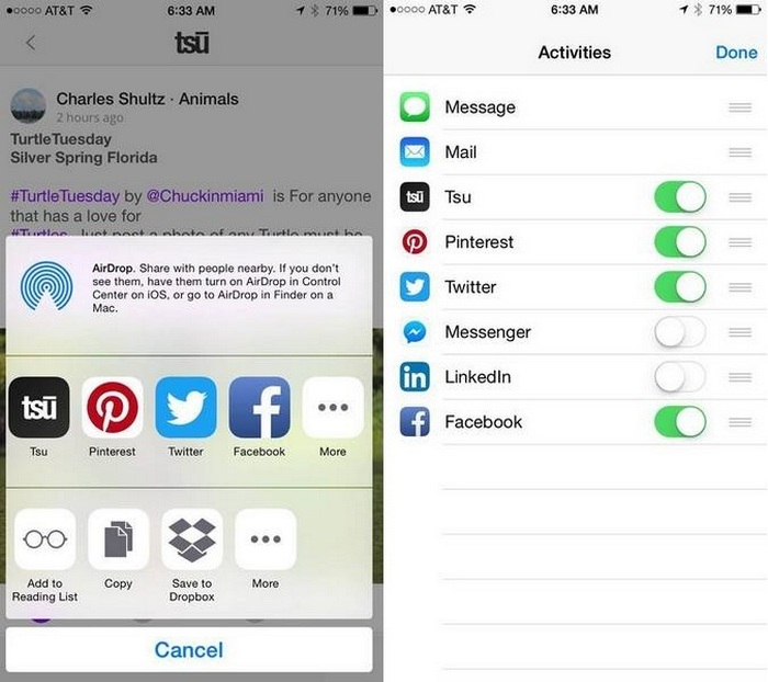 Tsu Social Apple IOS share options