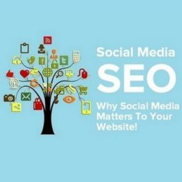 Social Media SEO – Why Social Media Matters To Your Website