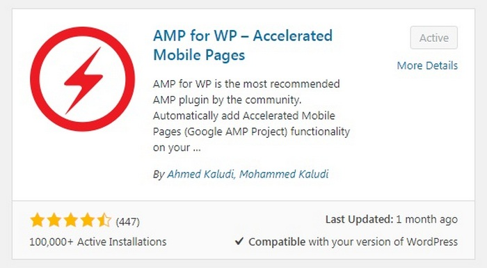 Wordpress Mistakes - AMP