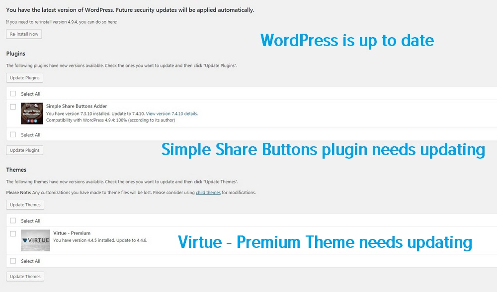 Plugin and theme update options