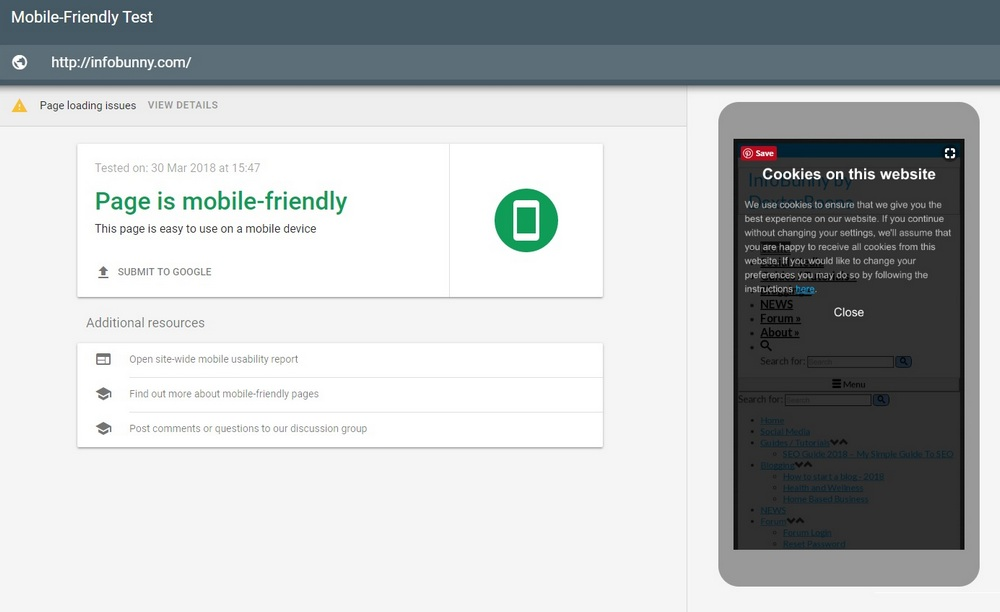 Mobile SEO Guide 2021 - Your page is mobile friendly