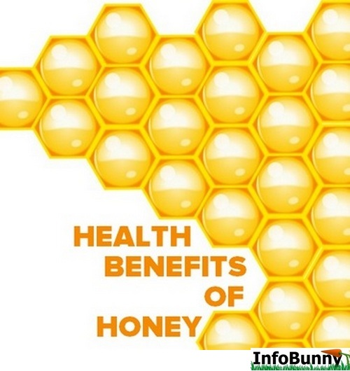 Honeycomb graphic for -The Health Benefits Of Honey