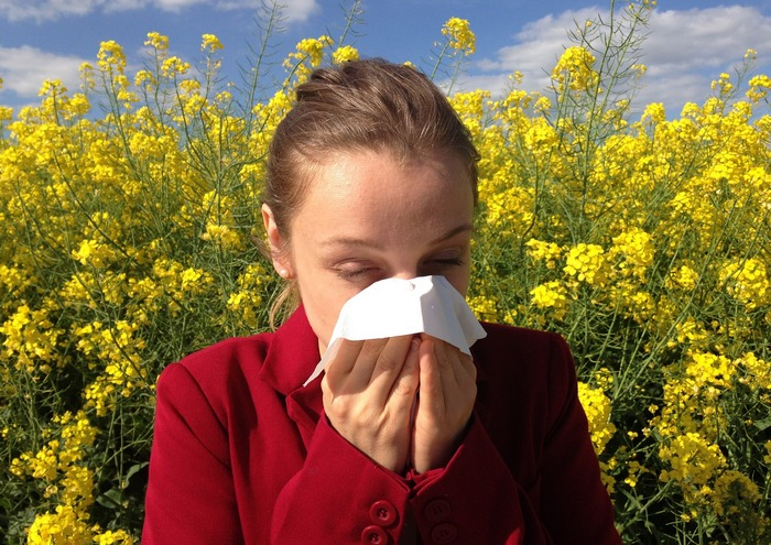 Image showing a hayfever sufferer sneezing into a tissue  - Honey, hayfever and allergies?