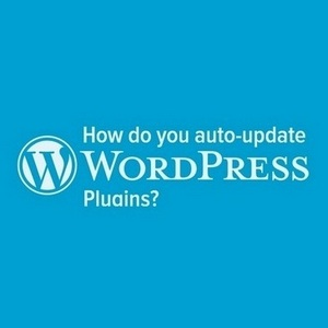 How do you auto-update WordPress plugins?