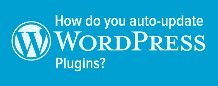 header for how do you auto-update WordPress plugins