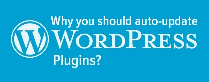 Header image - Why you should auto-update WordPress plugins